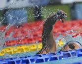50 Settecolli Trofeo Internazionale di nuoto 2013