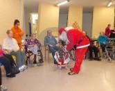 Cane Babbo Natale per gli anziani delle Rsa