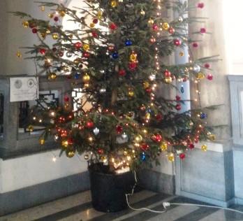 Albero Di Natale 4 Mt.Un Albero Di Natale Di 4 Metri Donato All Ospedale Quilivorno It