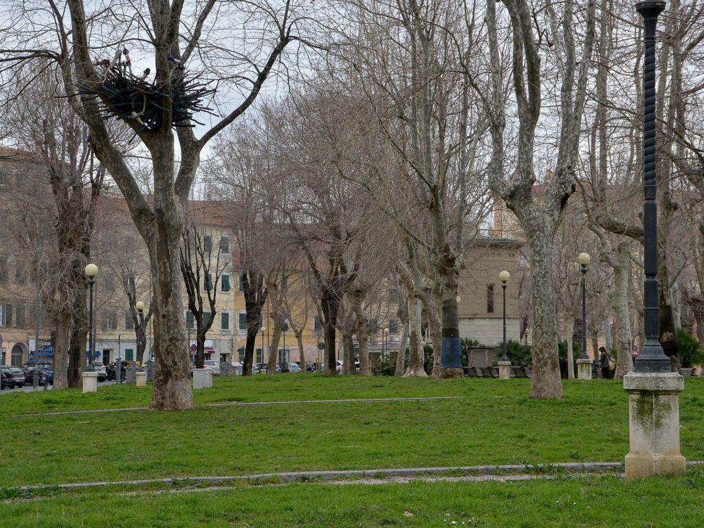piazza mazzini parcheggio stalli blu foto Simone Lanari
