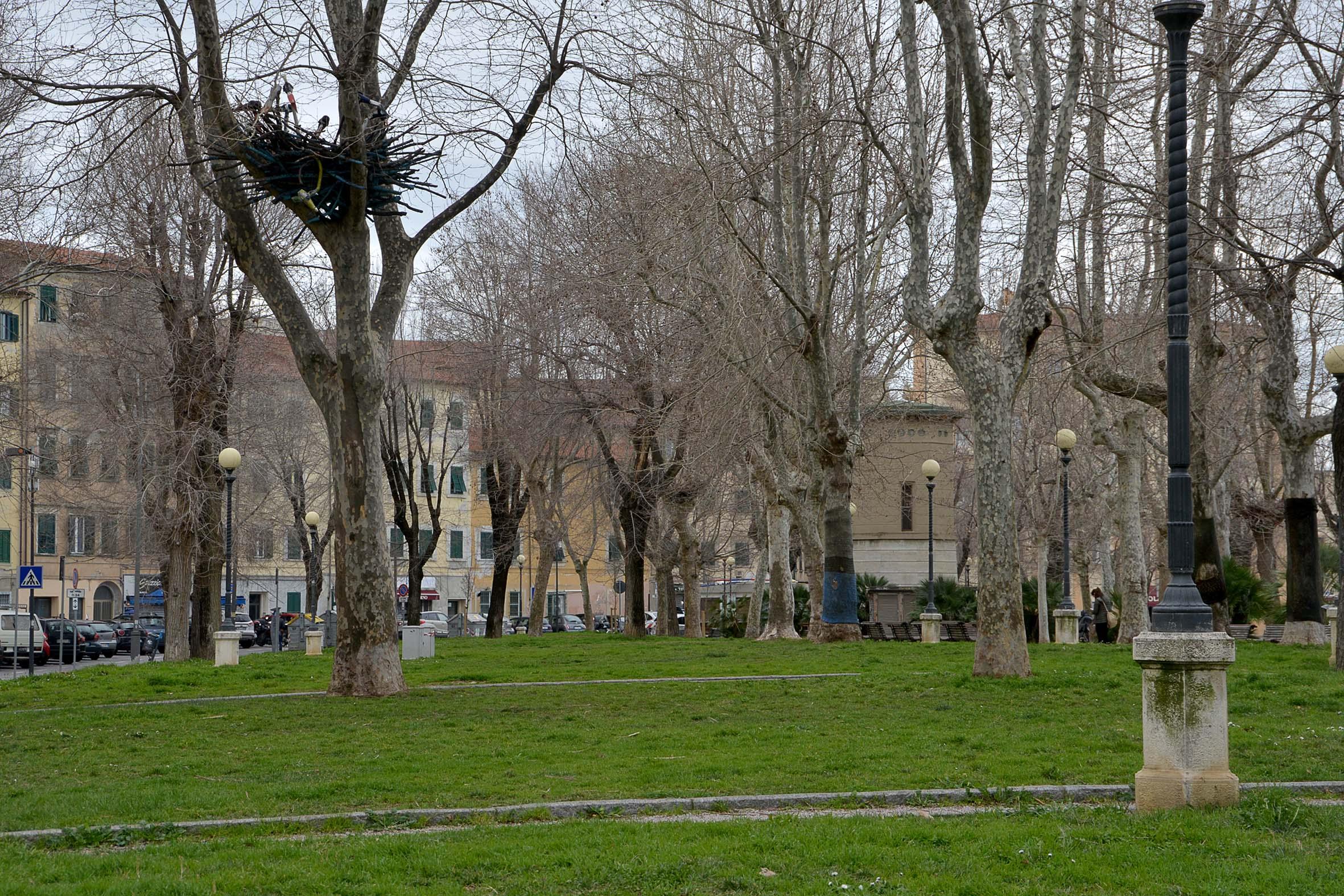 In Borgo oltre 480 firme contro gli stalli blu - QuiLivorno.it