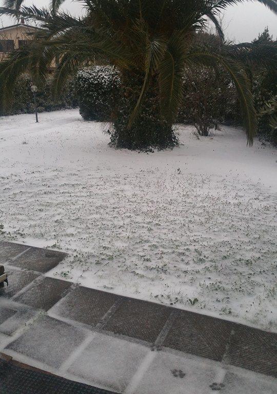 Neve in giardino di un nostro lettore