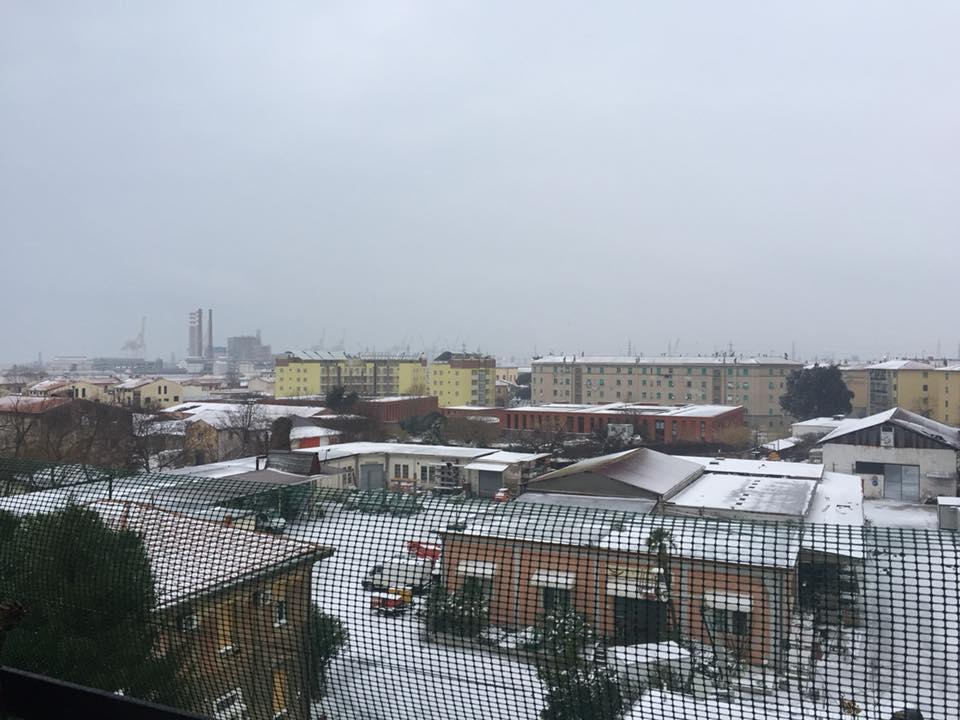 Neve sui tetti di Livorno