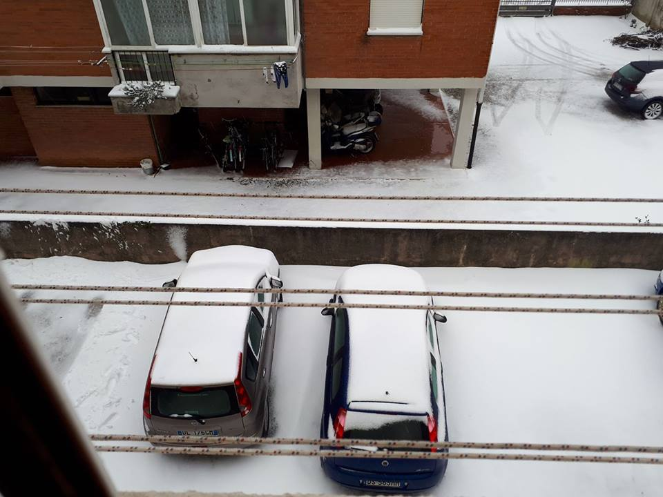 Neve a Stagno