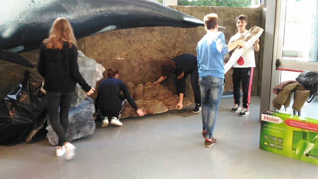 alternanza scuola lavoro al Museo di Storia Naturale